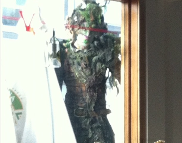 Tree Person Vcnice Ale House