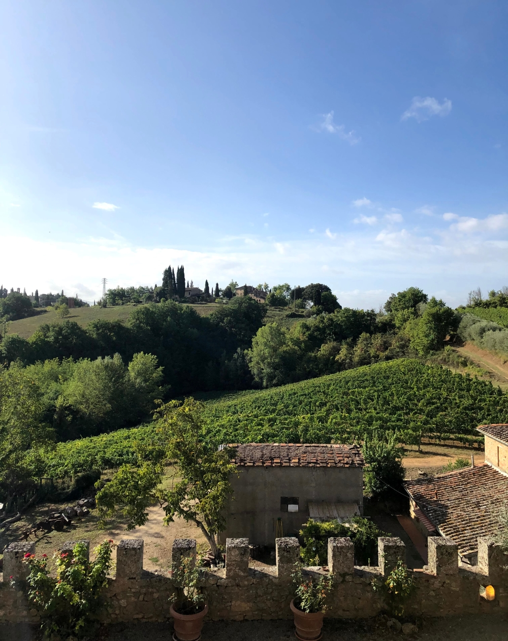 View from the back of Castello di Badia
