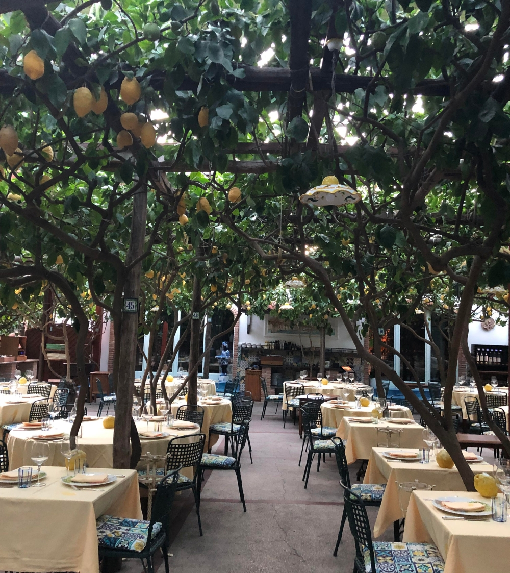 Da Paolino Lemon Trees